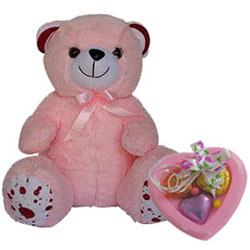Adorable Teddy with Heart Shaped Homemade Chocolates