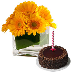 Tasty Chocolate Cake with Candles and Gerberas in Vase