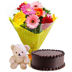Marvelous Teddy with Chocolate Cake and Mixed Gerberas Bouquet