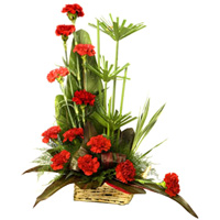 Online Carnations Arrangement Gift