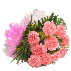Blushing Collection of Pink Carnations