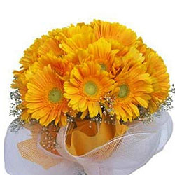Charming Yellow Gerberas Bouquet