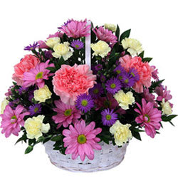 Seasonal Arrangement of Carnation Flowers in a Basket