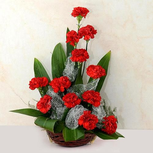 Eye-Catching Arrangement of Red Carnations
