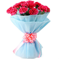 Order for a magical Hand Bouquet of Pink Carnations in a tissue