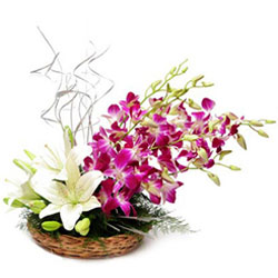 Charming Orchids with White Lilies Basket Arrangement