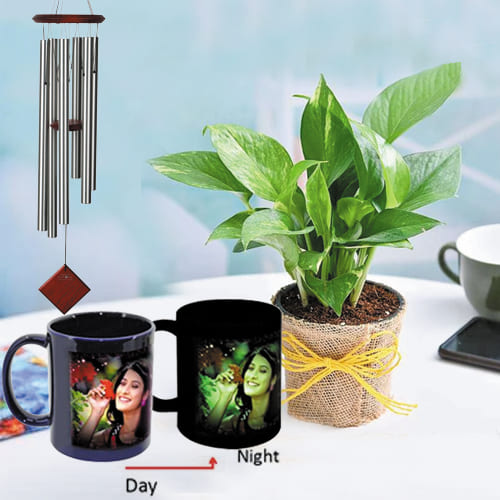 Impressive Personalized Photo Radium Mug with Money Plant N Wind Chime