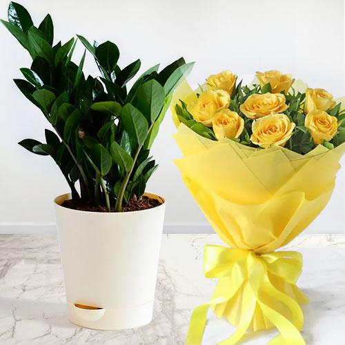 Enchanting Zamia Air Purifier Plant with Yellow Roses Bouquet