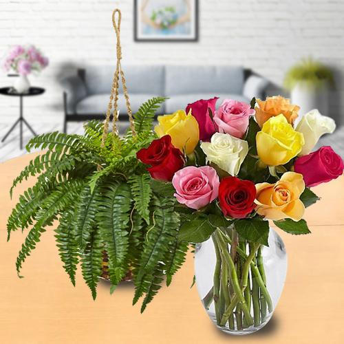 Exquisite Combo of Hanging Bostern Fern with Mixed Roses