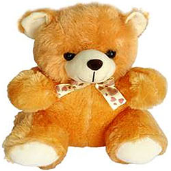 Amazing Teddy Bear Soft Toy